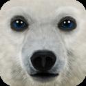 Ultimate Arctic Simulator v 1.1 APK
