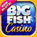 Big Fish Casino - Play Slots and Casino Games APK Download