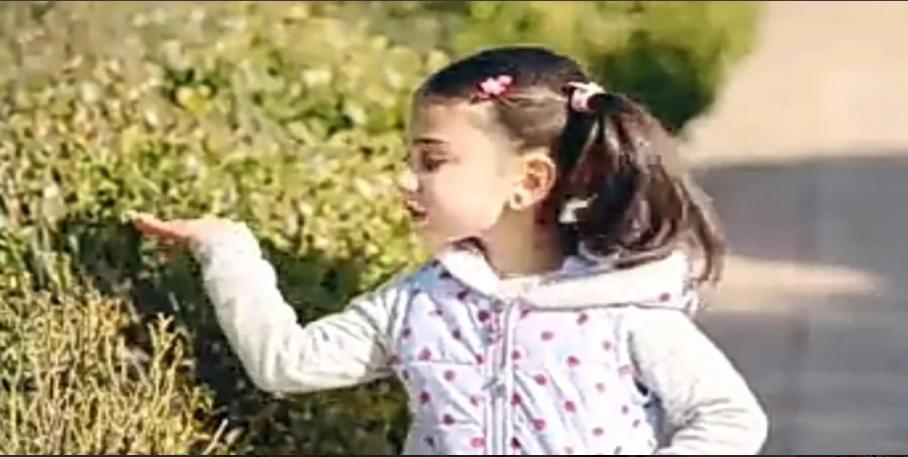اجمل اغاني اطفال فيديو بدون نت 2020 APK download