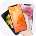 Auto Wallpaper Changer Daily Background Changer Pro V2.3.4 APK