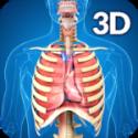 Respiratory System Anatomy V 1.8 APK has been unlocked